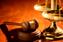 Boise Litigation Boise Expert Witness